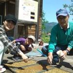 種まき 一からの米づくり体験