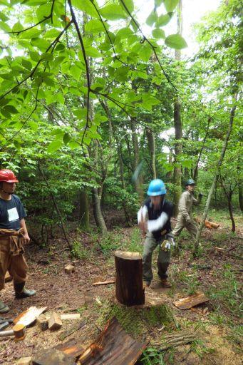 里守隊活動 オオコバの森 薪割り