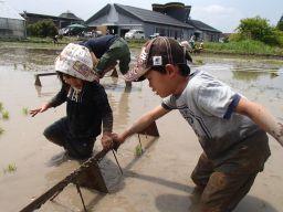 泥だらけ上等。_256