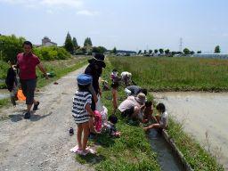 今年は水路が人気。_256